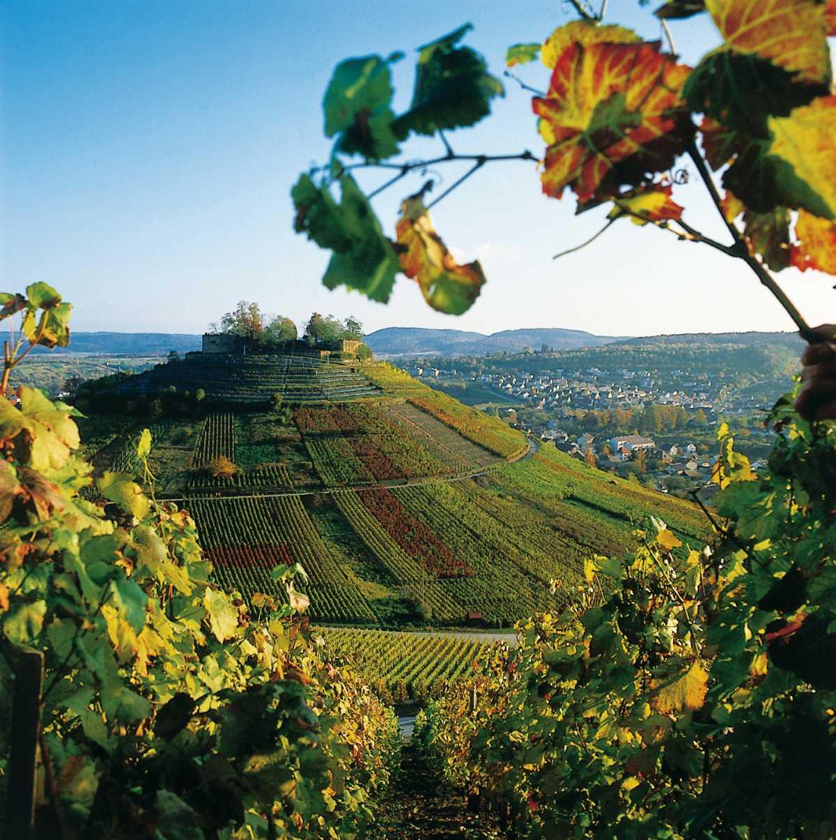 Wein, Fachwerk und Blühendes Barock